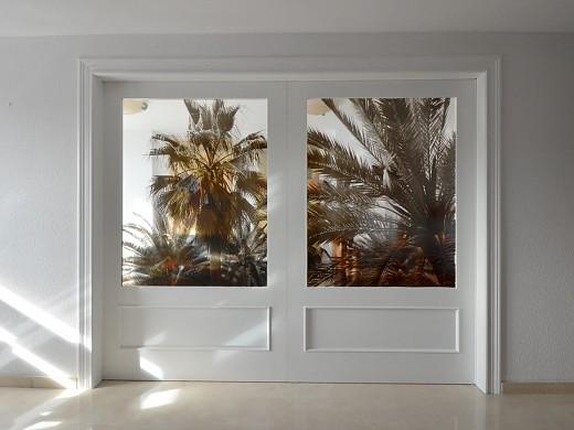 Puerta palmera